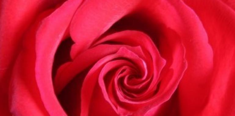 Čakre & barvna terapija: 1. čakra