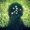 Klub samskih sorodnih duš, druženje, meditacije, pogovor