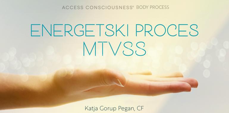 Delavnica energetski proces MTVSS