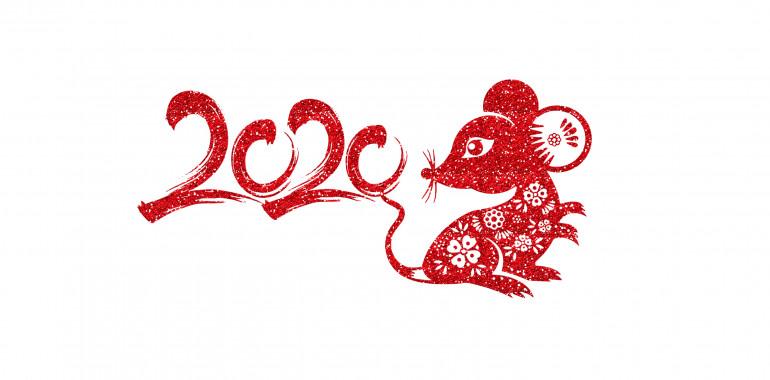 Kitajski horoskop 2020 – leto podgane: leto produktivnosti, moči in fokusa!