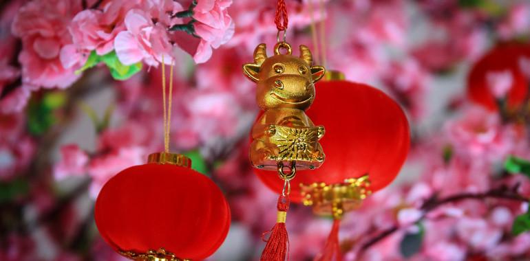 Kitajski horoskop 2021 – leto BIVOLA: leto obilja, bogastva in odnosov!