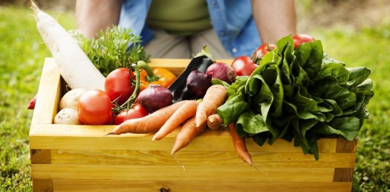 Zdrava prehrana: kako se vidik TKM zdrave prehrane razlikuje od tega, kar že veste 3/4