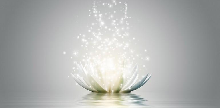 Individualna terapija in svetovanje po metodi Sofija healing