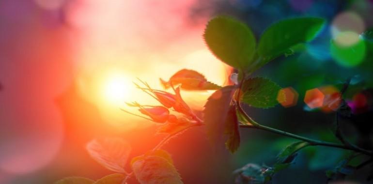 Ljudje, ki sodelujejo z angeli, svoje življenje živijo bolje