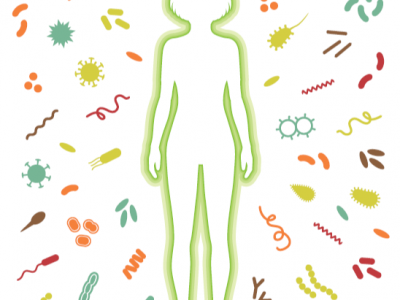 Spletna delavnica: Refleksoterapija za zdrav imunski sistem
