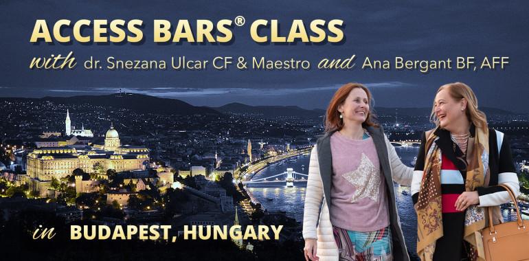 Access Bars® delavnica v Budimpešti
