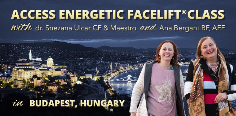 Energijski Facelift® delavnica v Budimpešti