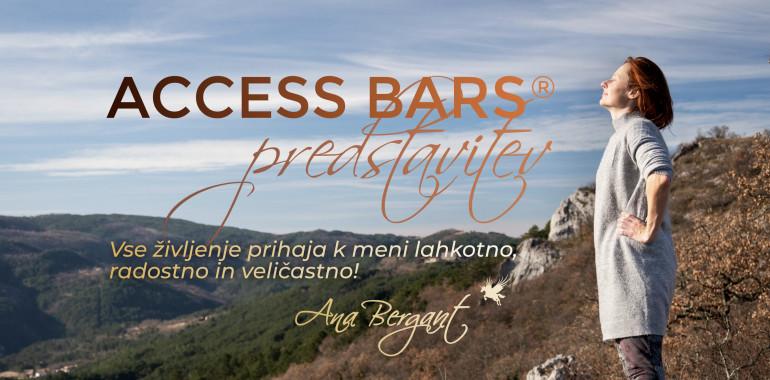 Access Bars predstavitev online