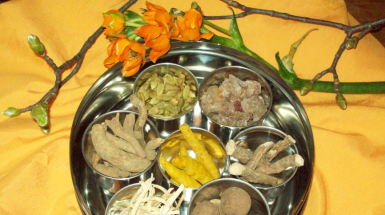 Ayurveda in partnerski odnosi (Harmony program)