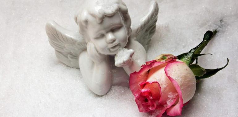 Sporočila angelov - angelski reading