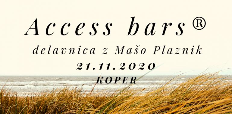 Access bars® delavnica z Mašo Plaznik