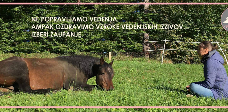 Prisluhniti živalim, čuječnost in osebna rast z živalmi, psihoterapija za živali