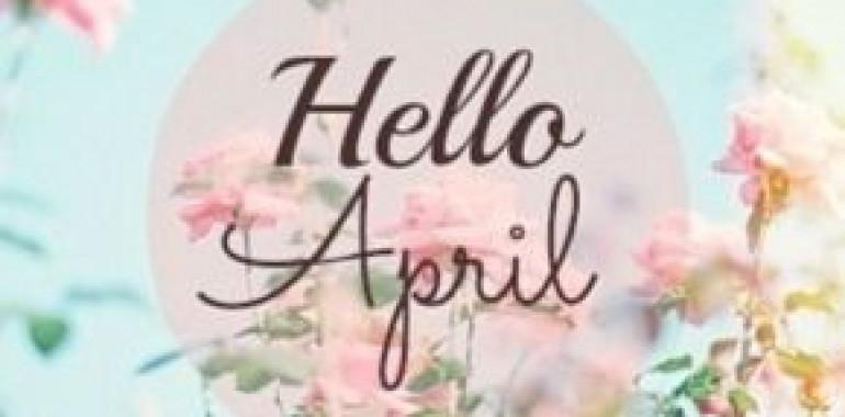 Dnevnik energij - april