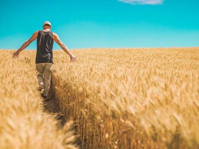 Neuhojena stezica: Boj za popolnost ubije kreativnost v nas in je vnaprej obsojen na neuspeh