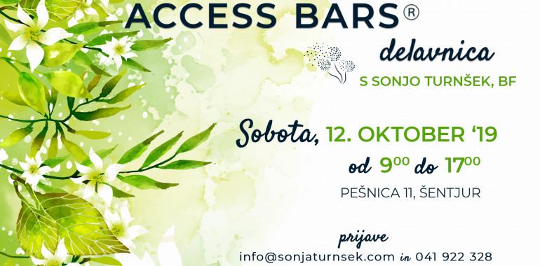 Access Bars delavnica