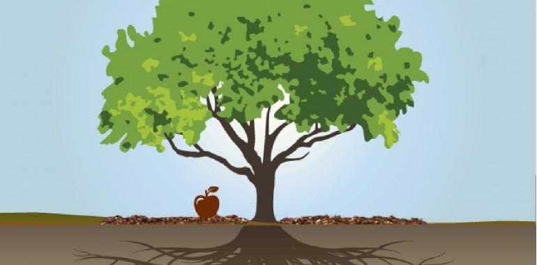 Podzavestni programi prednikov in njihov vpliv na naše izkušnje