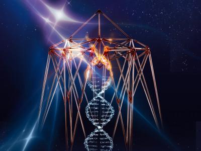 4-dnevni svetovni dogodek Stargate 2020: SIDRANJE KODE OBILJA - zaživimo svobodno!