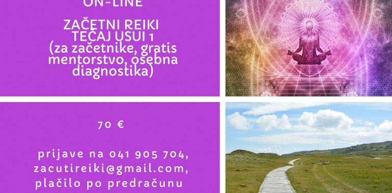 Online začetni reiki tečaj USUI 1, gratis diagnostika,mentorstvo