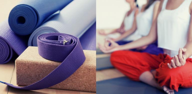 VPIS - izobraževanje za učitelja/ico joge Ajurjoga