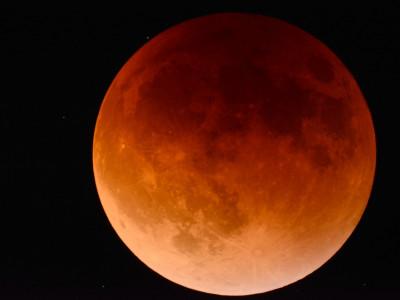 5. 7.: zaključni lunin mrk poletne sezone mrkov