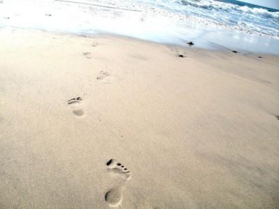 Razmislek tedna: koraki k sreči