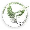 Biodanza - Sistem Rolando Toro, ples