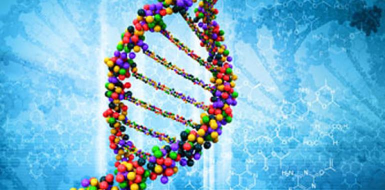Access MTVSS telesni proces - delavnica popolne obnove molekul