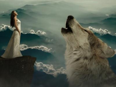 Katerega volka pa ti hraniš?