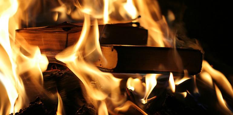 V ogenj