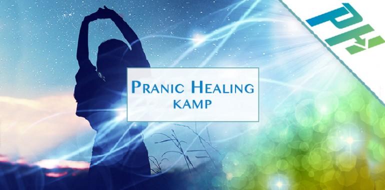 Pranic Healing kamp v Ljubljani