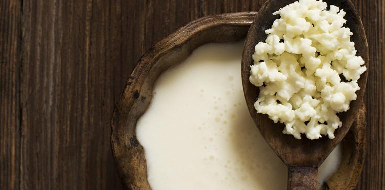 Presenetljiva resnica o pomembnosti probiotikov za zdravje možganov
