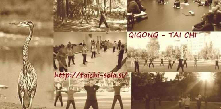 Qigong in Tai Chi začetni tečaj-online
