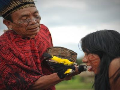 Sveti Obred Iniciacije Glasu Z Indijanci Huni Kuin