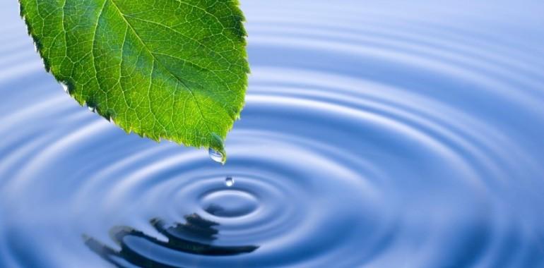 Duhovno vodstvo: enost
