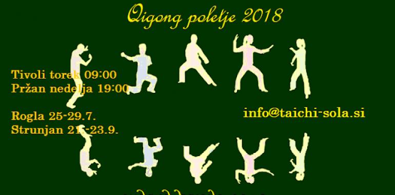 Qigong - umirjena vadba za vsakogar