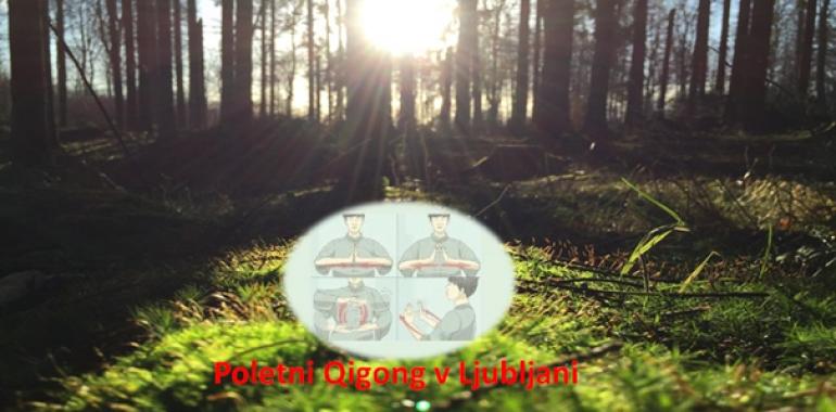 Poletni Qigong - učenje in vadba