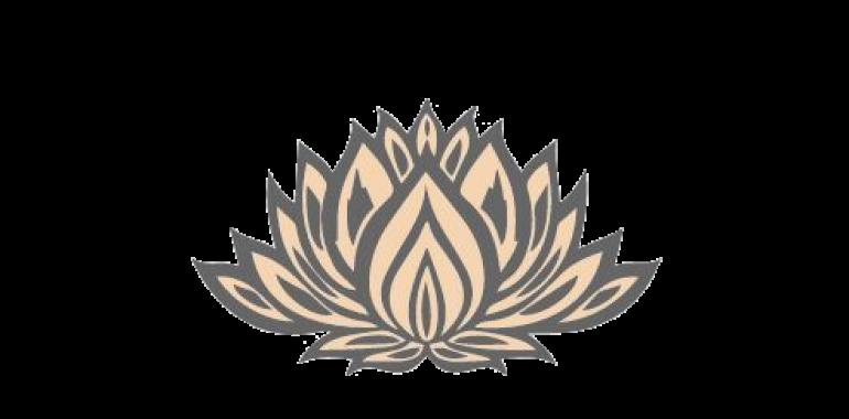 Alenka Dijak, Meditacije, Medicinska hipnoza, Coaching